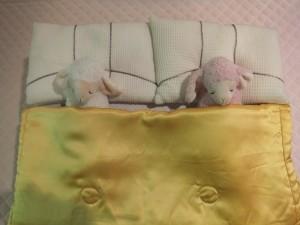 ダブルベッド そこにある盲点 2014.01.16  愛知県三河のオーダー枕専門店ぐっすり屋。