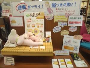 オーダー枕&敷き・マットレス 増税前のラストチャンス!2014.03.15