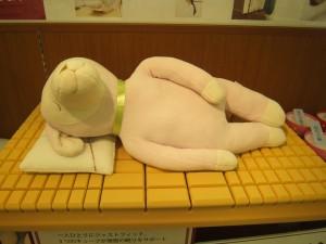 愛知県名古屋市千種区から、オーダーメイド枕のお客様。