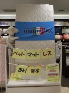 復活 いなモンゾーン  2015.11.13 八事店